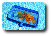 Pool Valeting Leaf Net